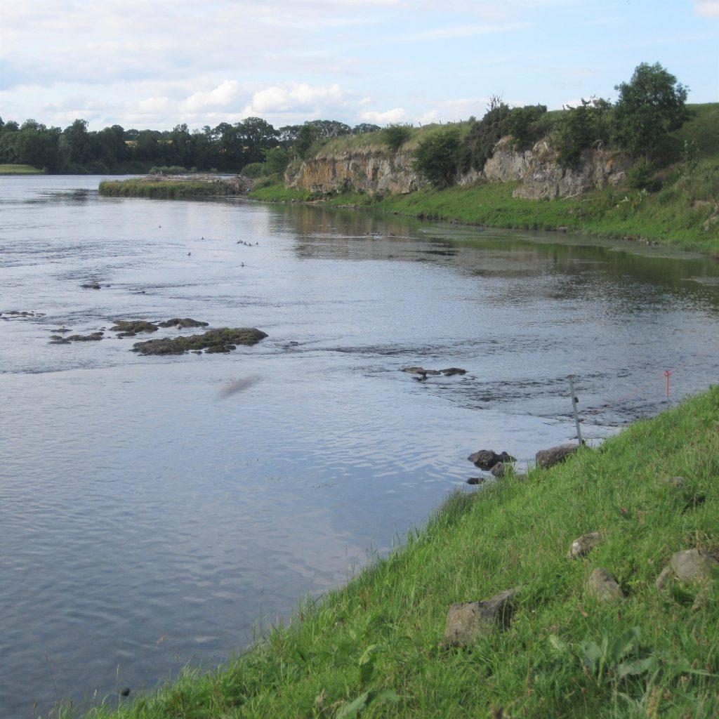 A riverside walk near Kelso.