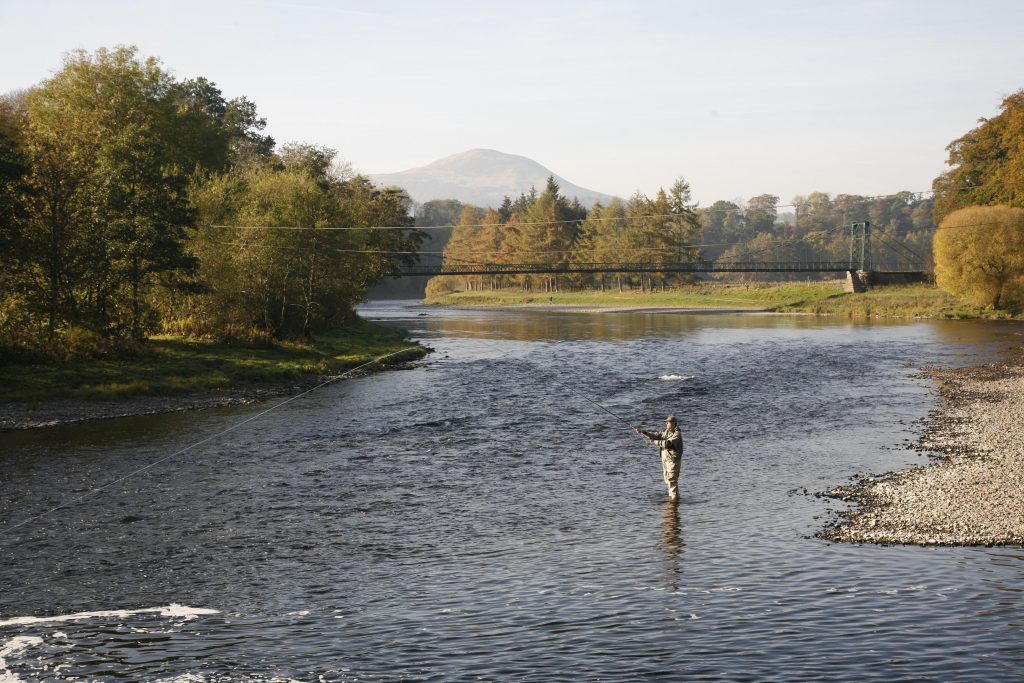 Angler fishing for late season salmon on the River Tweed near Dryburgh, Scottish Borders